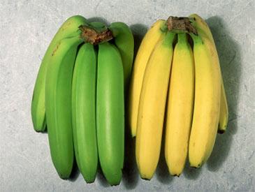 Unripe and Ripe Bananas