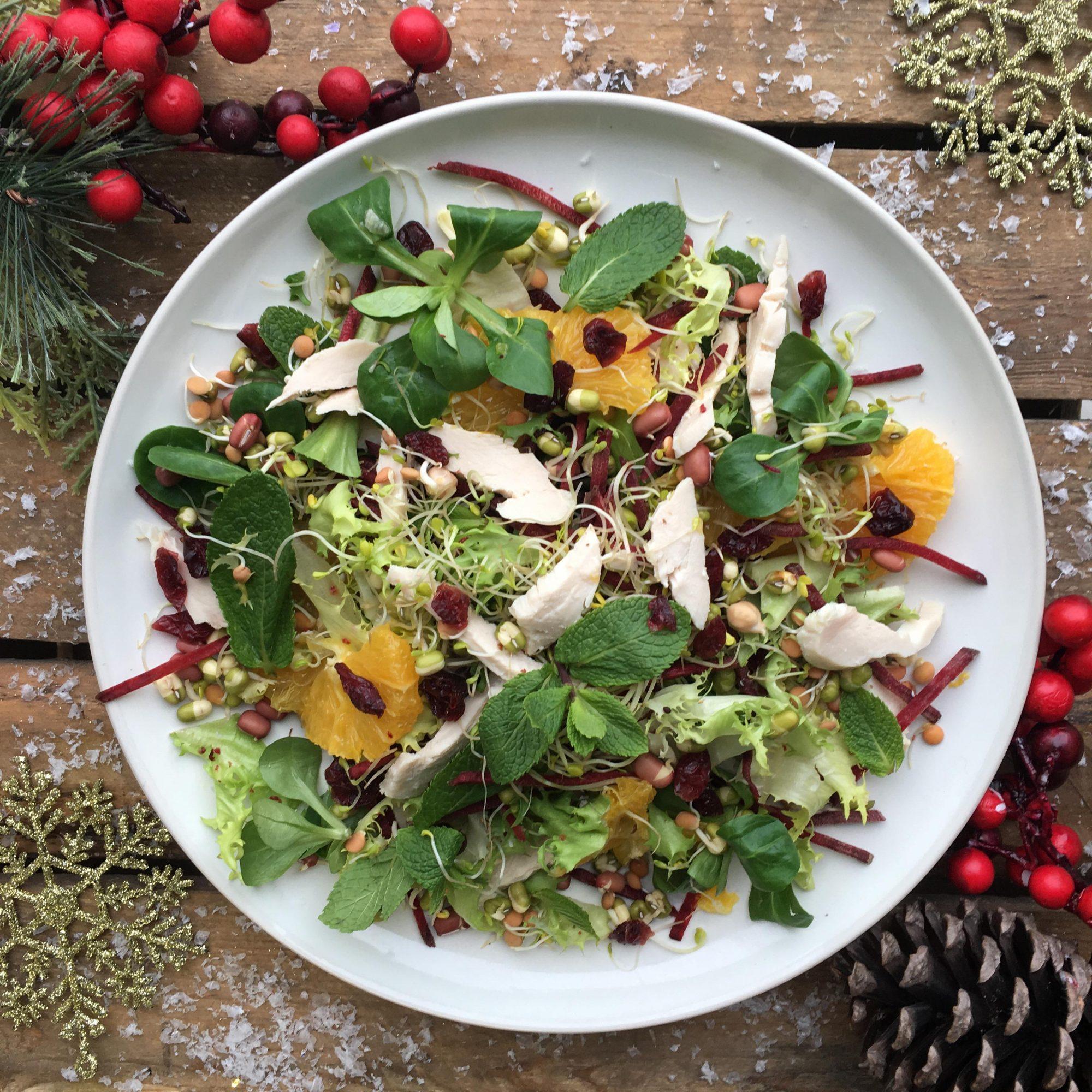 Turkey & Cranberry Salad