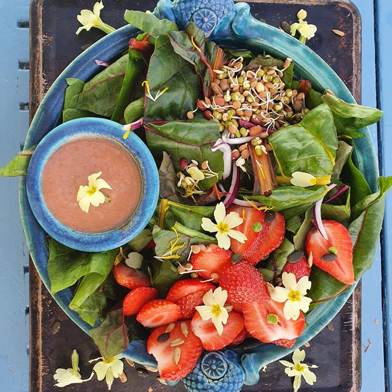 Seasonal Salad with primrose flowers & strawberry & avocado dressing